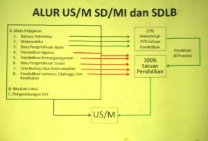usm (5)